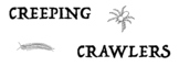 Creeping Crawlers Physical Education Game