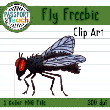 Creepy Crawly Bug and Critter Clip Art FREEBIE - Fly