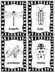 Creepy, Crawly Insects!  Auditory Memory and Comprehension Unit
