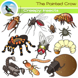 Creepy Arachnid and Insect Clip Art - Bug Illustrations - 24 piece