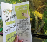 Crested Gecko Care Guide Brochure