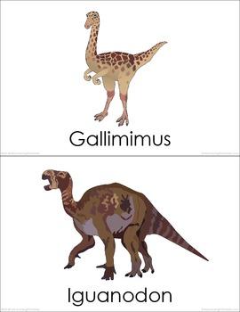 Cretaceous Dinosaurs (set III) Picture Flashcards