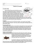 Cricket Informational Text (The Cricket in Times Square)