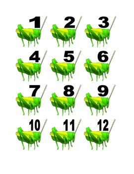 Cricket Numbers for Calendar or Math Activity