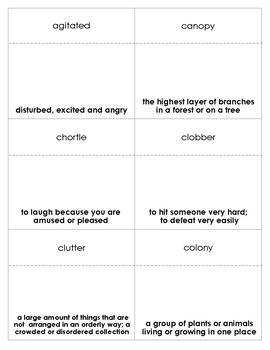 Crickwing Vocabulary Bingo