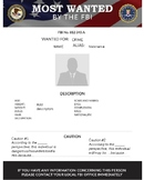 Criminal Profile Templates (Psychological Perspectives)