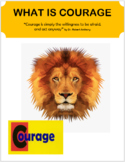 """Courage """"What is Courage"""" lesson plan and 2 activities"""