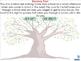 Critical Thinking: Decision Tree - MAC Gr. 3-8