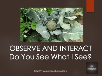 Critical Thinking Through Observation and Interaction - Classroom or Home