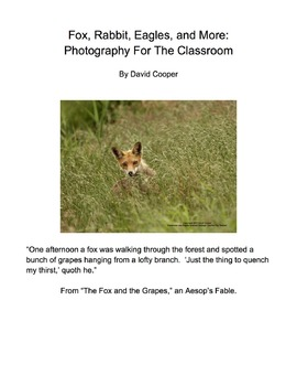 Fox, Rabbit, Eagles, and More: Animal Photos for Bulletin Boards and Handouts