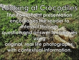Crocodile - Interactive PowerPoint Presentation