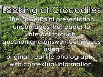 Crocodile - Interactive PowerPoint Presentation