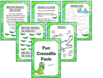 Crocodile and Alligator Preschool/Kindergarten Theme