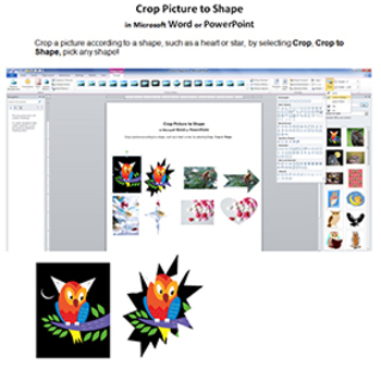 Crop to Shape in Word or PowerPoint