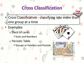 Cross Classification: The Classification Scheme of the Periodic Table