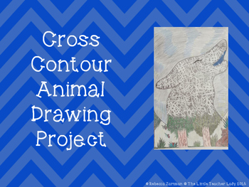 Cross Contour Animal Drawing Project