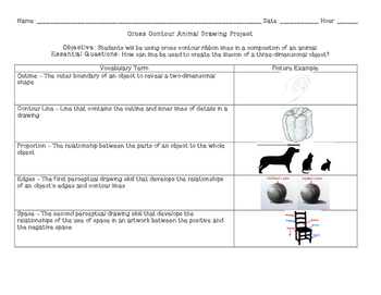 Cross Contour Animal Drawing Project Handout
