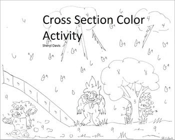 Cross Section Color Activity