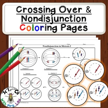 Crossing Over and Nondisjunction Diagram Activities