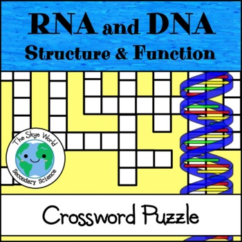 Crossword Puzzle DNA And RNA Structure And Function