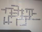 Crossword Letters Display