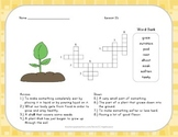 Crossword Puzzle - From Seed to Plant - Journeys Aligned