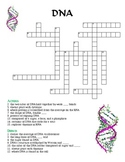 Crossword Puzzle - DNA (with Answer Key)