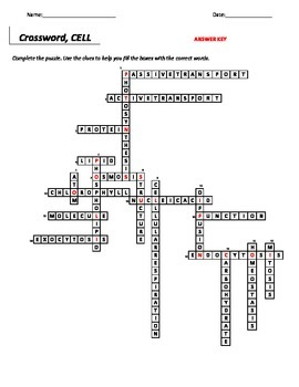 Crossword Puzzle_Cell set 2, Middle School Science, 6-8 Science