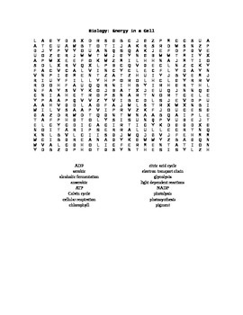 Word Search for Biology 1: Energy in a Cell