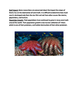 Crown of Thorns - starfish lesson article facts information questions vocab
