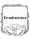 Crustaceans. Research Template Packet. Apologia Zoology 2. Lesson 8