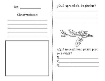 Cuaderno de Plantas / Plant Journal