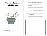 Cuaderno de Plantas / Plant Journal