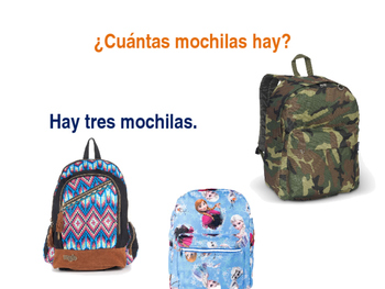 Cuantos Hay? How Many Are There? Spanish Question Practice