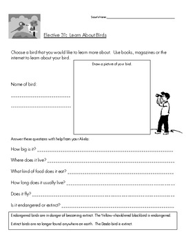 Cub Scout - Tiger Den - Elective 31 - Learn About Birds Worksheet