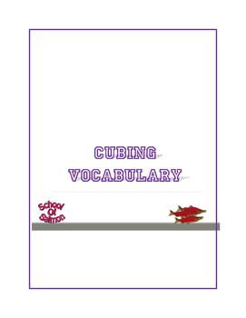 Cubing Vocabulary