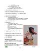 Cubist Portrait Visual Arts Lesson for Grades 3 to 10