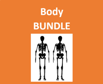 Cuerpo (Body in Spanish) Bundle