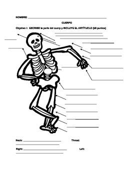 Cuerpo (body) exam 2
