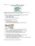 Cuidar el medio ambiente- prueba (quiz for 3R's science)