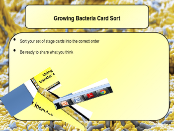 Culturing microorganisms Lesson