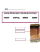 Cup O' Soil : Layers of Soil Project