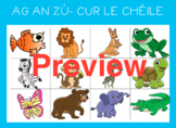 Cur le chéile. Matching game, bingo and vocabulary pack fo