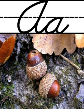 Cursive Alphabet Posters and Flashcards with Photographs