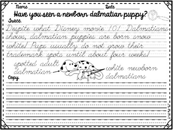 Cursive Handwriting Practice- Set 3 by Teaching is a Work of Art