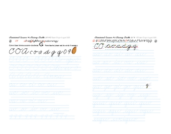 Cursive Script #2 Letters Traditional-style smaller