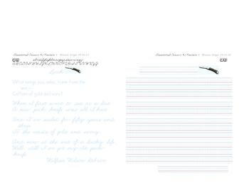 Cursive Script #4 Copying Practice