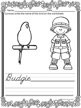 Cursive Writing: Birds (No Prep Worksheets)