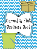 Curved & Flat Surfaces Sort