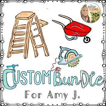 Custom Bundle for Amy J.